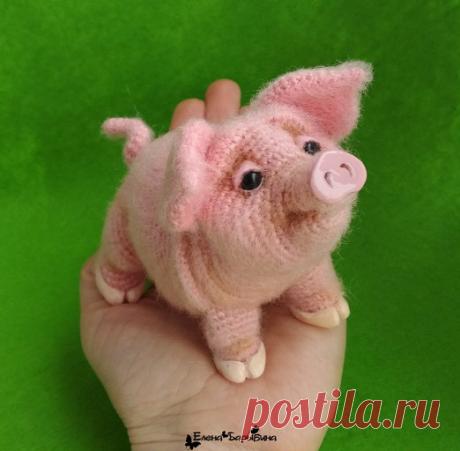Свинка Хавроша