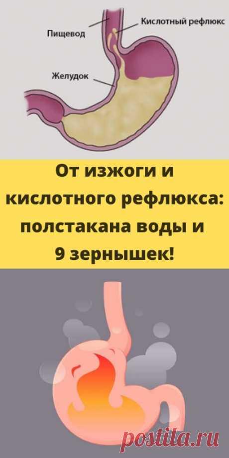 От изжоги и кислотного рефлюкса: полстакана воды и 9 зернышек! - My izumrud