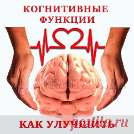Улучшение когнитивных функций. Аэробика для мозга