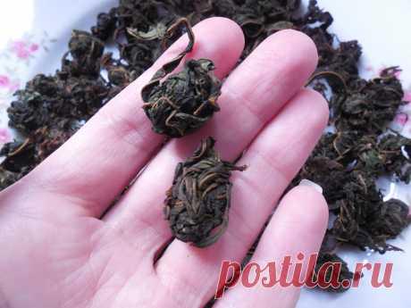 Два лёгких способа сделать правильный чай из кипрея (кипрей – Иван-чай) | Поехали на дачу? | Яндекс Дзен