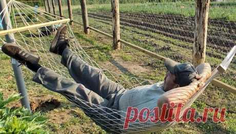 Впереди - три запретных дня для огородника В этот период лучше даже не пытаться ничего сажать.
