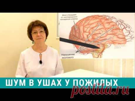 Шум в голове у пожилых: причины и лечение шума в ушах у пожилых