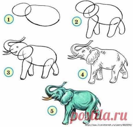 We LEARN to DRAW ANIMALS ✏ Keep to yourself not to lose \ud83d\udccc