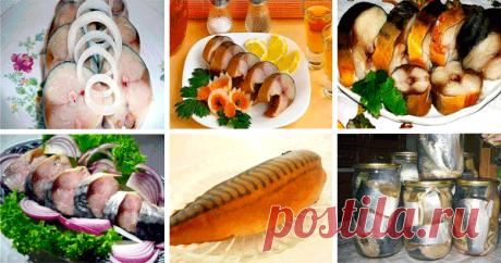 6 великолепных рецептов закуски из скумбрии или селедки