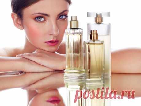 Женские ароматы, которые нравятся мужчинам. Top 7 | Познавательные советы для женщин | Яндекс Дзен