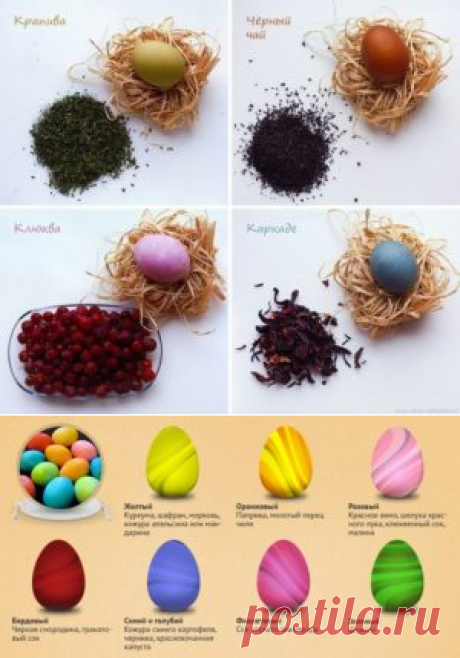 Como pintar los huevos en el color verde por los colorantes naturales