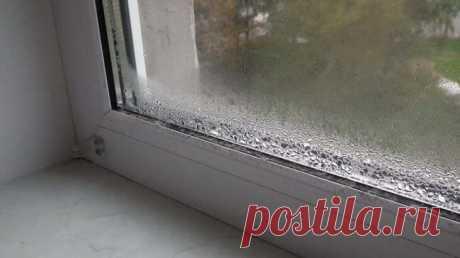 ВОТ КАК ИЗБАВИТЬСЯ ОТ КОНДЕНСАТА НА ПЛАСТИКОВЫХ ОКНАХ (ВИДЕО) Конечно же, все мы прекрасно знаем, что металлопластиковые окна и двери гораздо лучше могут сохранять тепло в доме, чем деревянные. Так как деревянные могут пропускать холодный воздух через щели между самой рамой и стеклом, ровно как и само дерево превосходно пропускает воздух. Но любые деревянные рамы — будь-то балконные или оконные — обладают одним неоспоримым плюсом, и плюс этот заключается в том, что они изг...
