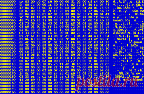 Интересные факты про компьютерные вирусы, которые вам следует знать