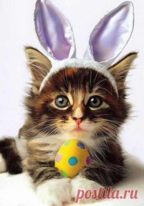 Soon Easter!