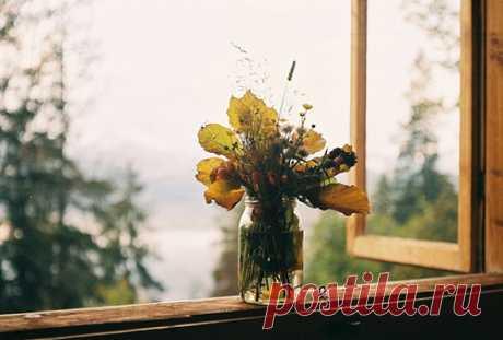 Правило счастливого сентября:  Мне хотелось бы написать одно слово — искренность.  Искренность во всём. В утреннем чае с душицей и смородиной, в каждом сказанном слове, в улыбке для незнакомых знакомых и наоборот, в прикосновениях друг к другу, и главное — к душам. Искренность в каждом мимолетном взгляде, в каждом робком движении плеч, в каждом уголке, отогнутом на странице книжки, и во всем тобой содеянном, сказанном и нерожденном.  Отдача. Полная, настоящая и совершенная...