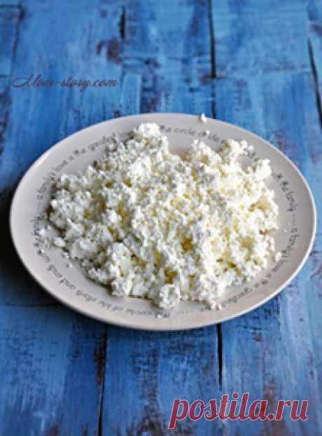 Домашний творог. Как сделать творог в США из молока Домашний творог. Как сделать творог в США из молока и сметаны.