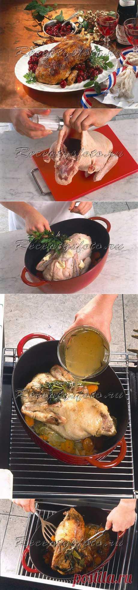 Утка, запеченная с вишней – рецепт с фото - Рецепты с фото