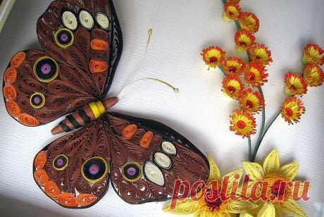 «Бабочка» — карточка пользователя elin7qw234 в Яндекс.Коллекциях