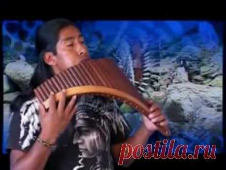 ECUADOR ANDES PASTOR SOLITARIO - YouTube