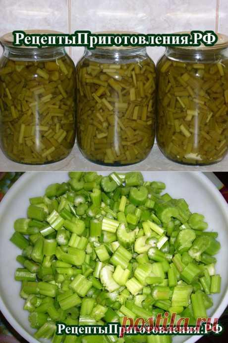 Сельдерей консервированный, рецепт приготовления  черешков сельдерея | Рецепты Приготовления.рф