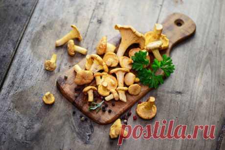 Засолка грибов: 8 способов — Вкусные рецепты