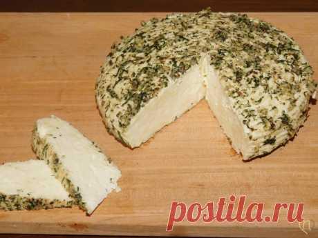 Адыгейский сыр с лимоном | Рецепты сыра | Сырный Дом: все для домашнего сыроделия