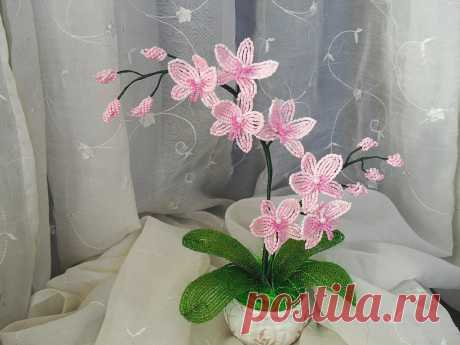 Волшебный букет из орхидей из бисера своими руками — Сделай сам, идеи для творчества - DIY Ideas