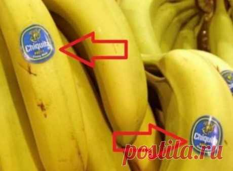 Be careful when you buy bananas! Whether you know what is meant BY THESE stickers?