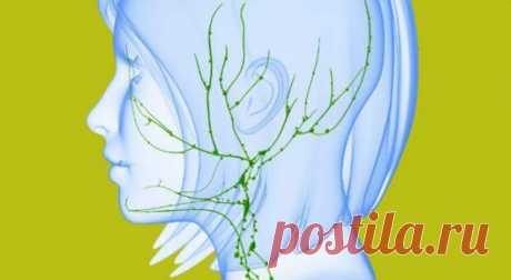 Рак и лимфатическая система Оказывается, рак и лимфатическая система связаны довольно интересным образом. Лимфатическая система работает параллельно с кровеносной системой. В отличие от крови, у лимфы нет насоса, который стимулировал бы ее движения: она течет по телу посредством движения мышц.Лимфа — это прозрачная жирная жидкость, вырабатываемая костным мозгом, органами и железами, которая движется по всему телу, неся питательные вещества […] Читай дальше на сайте. Жми подробнее ➡