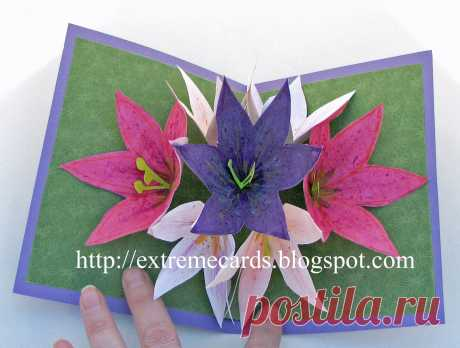 Extreme Cards and Papercrafting: Seven Flower Pop Up Card