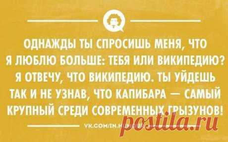 Пуси-пуси юмор для девушек и женщин. Подборка прикольных картинок и фото №ofigennaja-35530312112019 | Офигенная