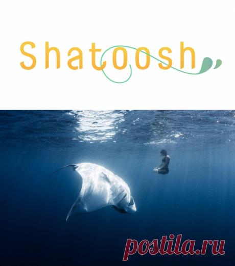 Как толковать сны: мунуал для новичков. Часть 1 | Shatoosh