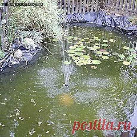 Поделки Садовые поделки с фото инструкцией