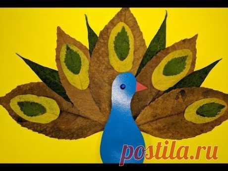 Осенняя поделка из листьев. Павлин. Peacock made from autumn leaves.