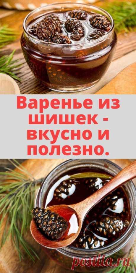 Варенье из шишек - вкусно и полезно. - My izumrud