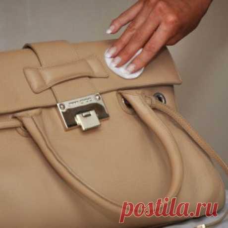 Чем и как почистить кожаную сумку в домашних условиях?