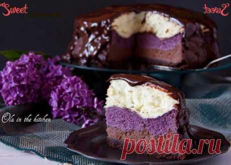 Чизкейк шоколадно-ягодный с воздушным безе | Sweet Twittes