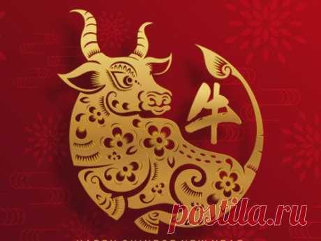 Какого числа китайский Новый год в 2021 году и как нужно встречать год Быка