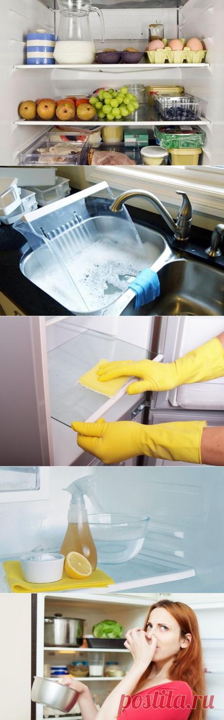10 хитростей, которые помогут сохранить продукты и чистоту в холодильнике / Домоседы