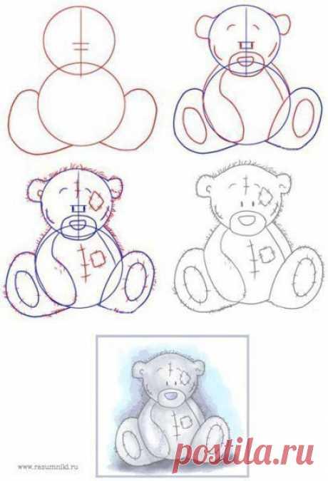 Поэтапно рисуем мишку