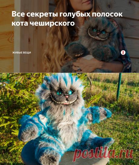 Все секреты голубых полосок кота чеширского   Живые вещи   Яндекс Дзен
