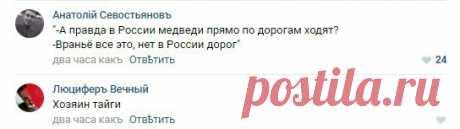 """El vídeo con \""""ha injuriado\"""" dalnoboyschikov por el osezno en Yakutia ha hecho reír Runet. Ridus"""
