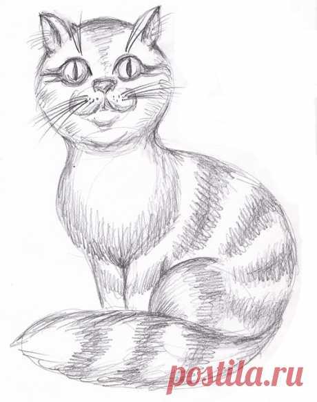 «рисунки котов карандашом интересные» — карточка пользователя slavashishaev в Яндекс.Коллекциях