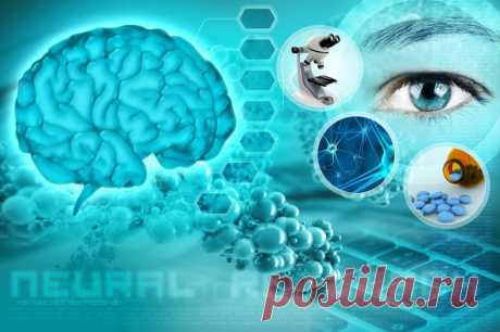 Советы академика Бехтерева для здоровья мозга / Будьте здоровы