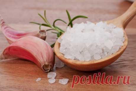 Пищевая соль сохранит вам чеснок до следующего урожая!!! | Любимая Дача | Яндекс Дзен