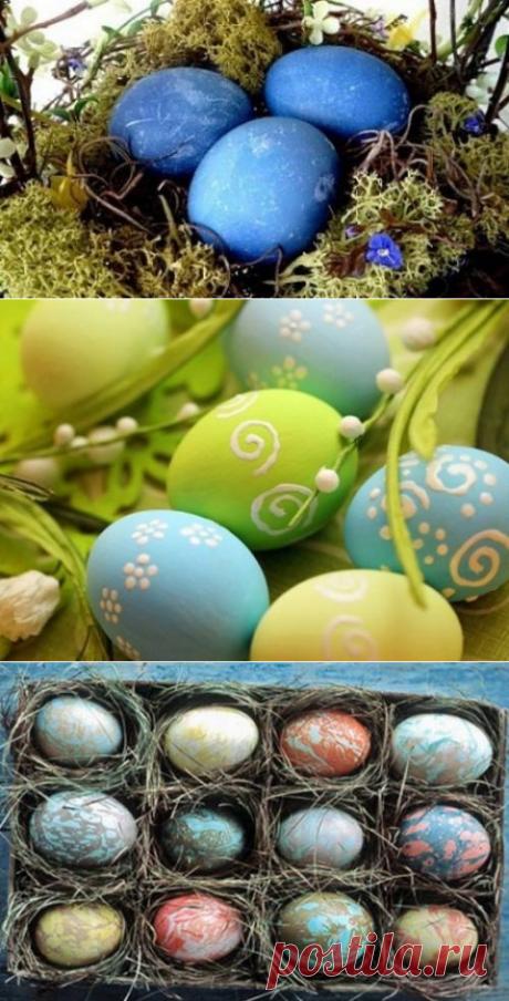 Как покрасить яйца на Пасху натуральными красителями! » Женский Мир