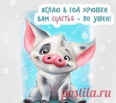 Прикольные Поздравления С Новым Годом 2019 (Свиньи) | Всё для праздника