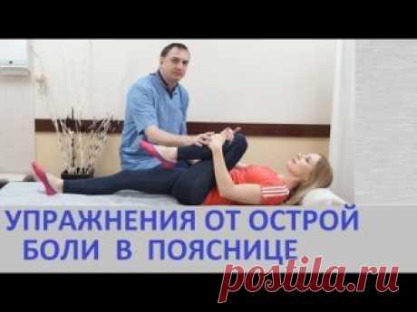 Los ejercicios para el tratamiento del dolor en los riñones – a la radiculitis, el lumbago, la ciática, miozite los riñones, zaschemlenii del nervio ciático. La gimnasia a la agudización de la hernia dis...