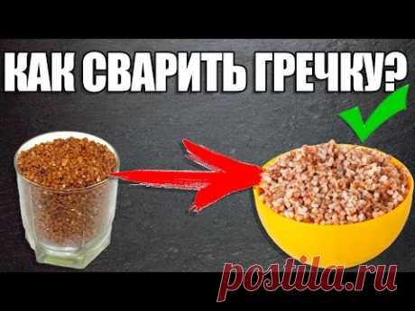 Как сварить гречку?