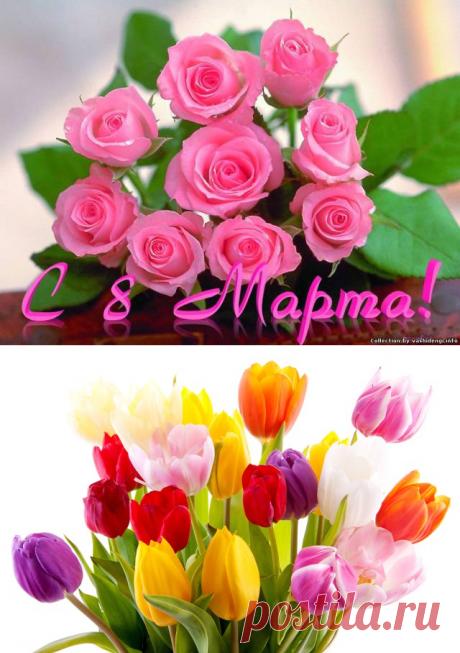 Лучшие поздравления в стихах на 8 марта – Международный женский день | Imenno.ru