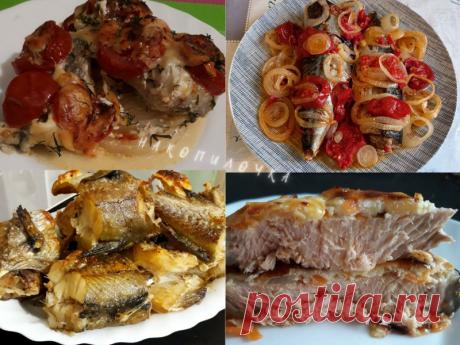 Четыре варианта приготовления рыбы в духовке, которые очень любят в нашей семье. Хоть на праздник, хоть просто так   Накопилочка   Яндекс Дзен