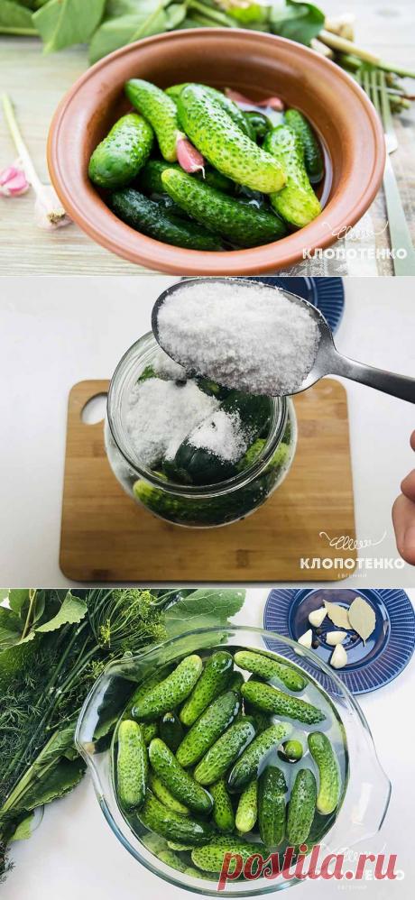 Малосольные огурцы: простой рецепт засолки огурцов от Евгения Клопотенко