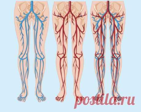 Варикозное расширение вен: Простые упражнения от застоя крови Упражнения для ног способны приостановить развитие варикоза, устранить симптомы недостаточности венозных сосудов, предотвратить возникновение осложнений. Такие простые упражнения, не требующие никакой специальной подготовки, способствуют ускорению кровообращения и предупреждают возможные застои...