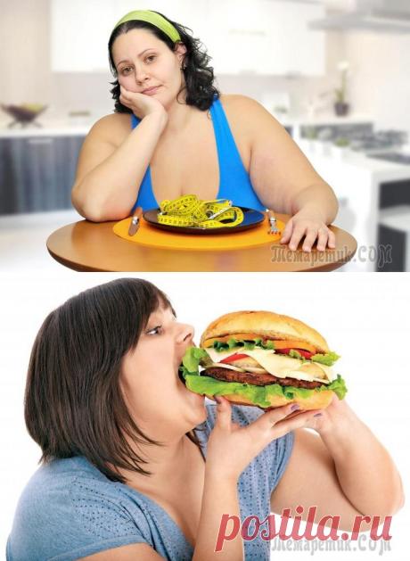 6 типов ожирения и способы борьбы с каждым из них