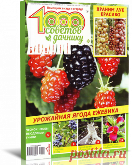 1000 советов дачнику №17 2019